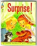 Surprise Elf Childrens Book -