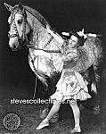C.1908 Circus Girl Costumed With Horse - Photo