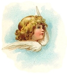 Full Color Angel Illustration C