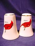 Contemporary Ceramic Cardinal Salt And Pepper Shakers