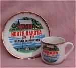 North Dakota Souvenir Cup & Saucer Demi