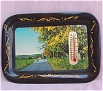 Delaware Thermometer Metal Souvenir Tray