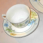 Crooksville China #1233 Floral Cup & Saucer