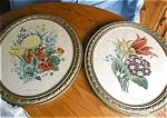 Two Vintage Floral Prints