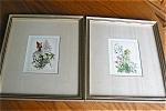 Vintage Hirsch Floral Prints