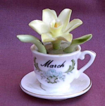 Maruri Enesco 1978 March Birthday Teacup