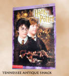 Harry Potter Chamber Of Secrets Poster Book