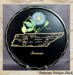Tennessee 1950s State Souvenir Metal Tray