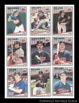 Minnesota Twins 1989 Fleer Baseball Cards 9 Pc