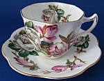 Rosina Cup And Saucer Pink White Camellias England