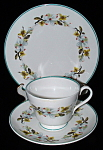 Shelley England Teacup Trio Bailey's Dogwood Windsor