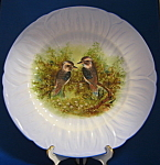 Shelley China Oleander Plate Charger Birds Kookaburras