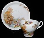 Shelley Heather Tea Cup And Saucer England Cambridge