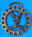 Horse Brass England Stag Head Duke Of Westminster