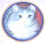 Sweet Kitty Cat Decorative Collector Plate