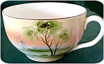Beautiful Hand Painted Nippon Porcelain Cup And Saucer