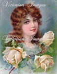 Beautiful Lady With Roses Graphic Image Download