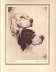Vintage Print Aristrocats Dogs By J Knowles Hare