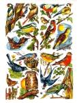 Vintage Die-cut Scrap Birds German Eas Full Sheet
