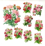 Vintage Die-cut Pzb Carnations Set Old German