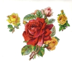 Victorian Die-cut Large Rose's Bunch Red And Yellow