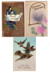 Three Postcard Greetings With Birds & Parrots