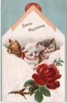 Vintage Postcard Baby Kittens With Rose Greeting Good Morning