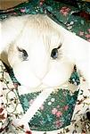 Janis Berard Porcelain Rabbit