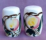 Japan Hand Painted Fruit Salt & Pepper Shakers