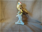 Bird Figurine With Real Feathers