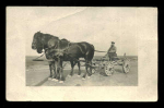Photo Postcard Man On Wagon 2 Horses 1914