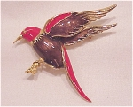 Costume Jewelry - Gold Tone Red And Brown Enamel Bird Brooch