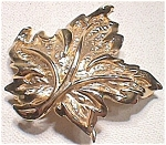 Napier Maple Leaf Pin Brooch