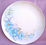 Morning Glory Hand Painted Plate