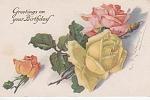 Vintage - C' Klein - Roses-excellent Study