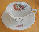 Edelstein Bavaria Porcelain Cup And Saucer/us Zone