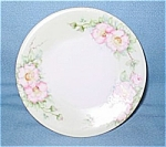 Bawo & Dotter Elite Limoges France Floral Plate