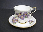 Royal Windsor Bone China Cup & Saucer