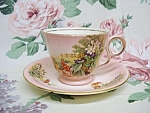 Great Royal Winton Antique Cup & Saucer