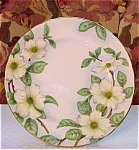 Lovely Tuscan China Plate - Dogwood