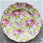 Royal Standard Chintz 7 Inch Plate