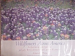 Signed Lady Bird Johnson Wildflowers Poster