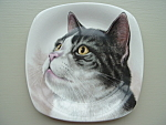 Portrait Plate Cat Dish Tabby Cat Staffordshire