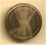 Vegetable Ivory Button, Great Coloring