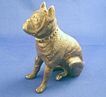 Cast Iron Bull Dog Still Bank