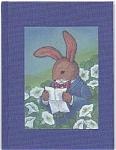 Jeremy: The Tale Of An Honest Bunny By Jan Ka