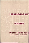 Immigrant Saint By Pietro Didonato