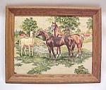 Horse Mare Colt Foul 3d 3 D Dimensional Framed Picture