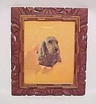 Irish Setter Spaniel Dog Litho Print Picture Wood Frame