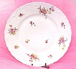 Theodore Haviland Limoges France Dinner Plate Floral